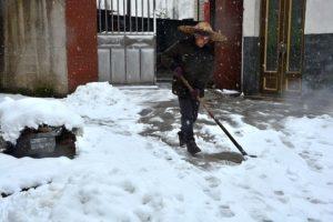 Woman shoveling