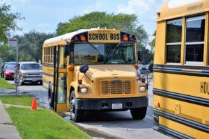 school buses, accident