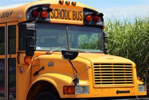 school bus, car accident lawyer